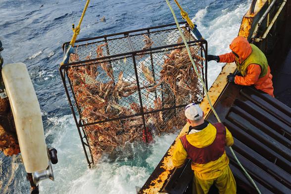 опыт рыболовного промысла